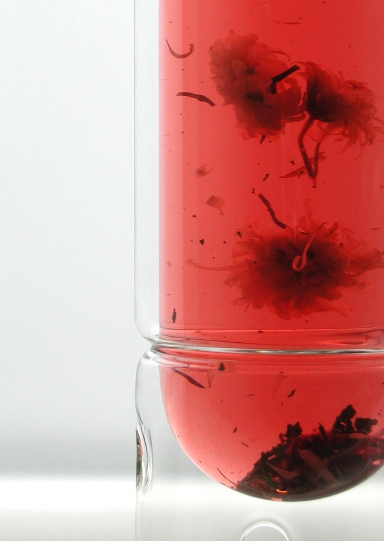 delicate sediment from the tea swirls in float tea lantern
